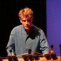 Edwin v.d Wolf- percussionist